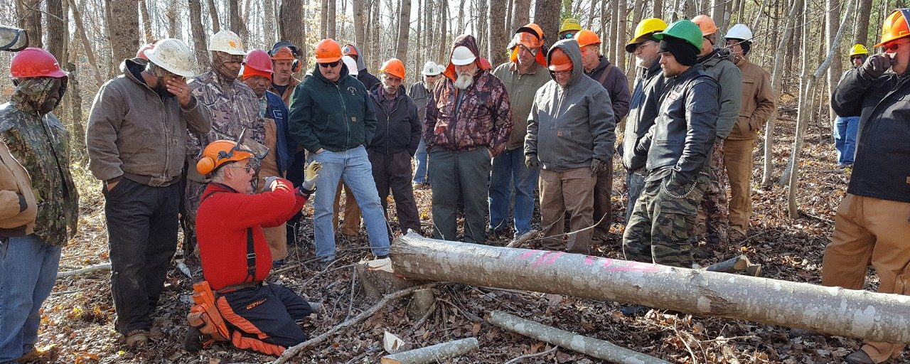 The SHARP Logger extension program offers training to Virginia's logging workforce on the topics of sustainable forestry, environmental protection, and workplace safety. Photo credit: Andrew Vinson